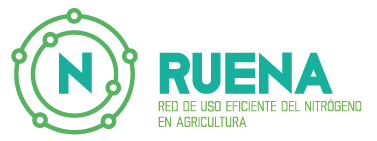Ruena
